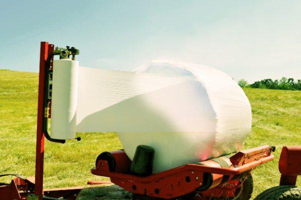 Etapas da Produção: Plastificação do Pré Secado
